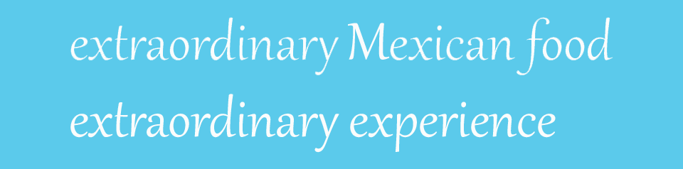 Extraordinary Mexican Food, Extraordinary Experience